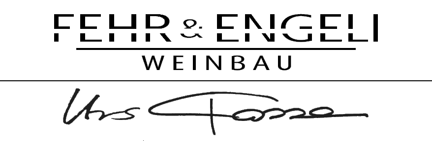 Fehr & Engeli Ueken AG